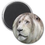 León blanco imán de nevera