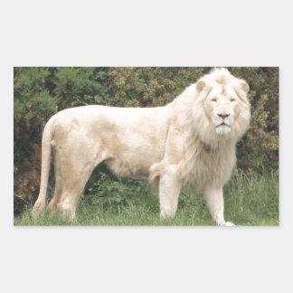 León blanco majestuoso pegatina rectangular