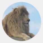 León blanco pegatina redonda