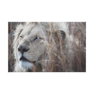León blanco que descansa - africano impresión en tela