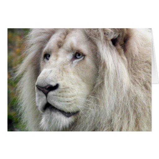 León blanco tarjeta de felicitación
