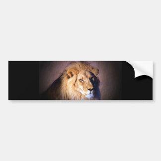 León Etiqueta De Parachoque