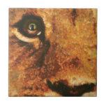 León Cub con el arco iris en ojo Teja