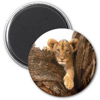 León Cub Imán De Frigorifico