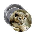 León Cub lindo Pin