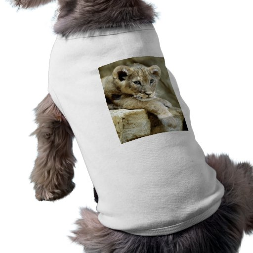 León Cub lindo Playera Sin Mangas Para Perro