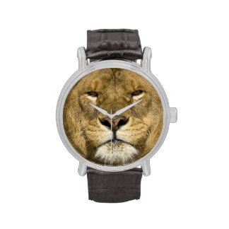 León de Barbary del africano, Panthera leo leo, un Reloj De Mano