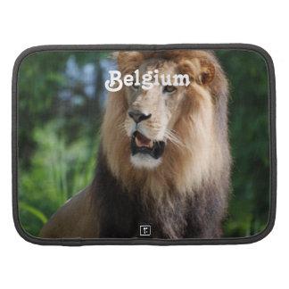León de Bélgica Organizador