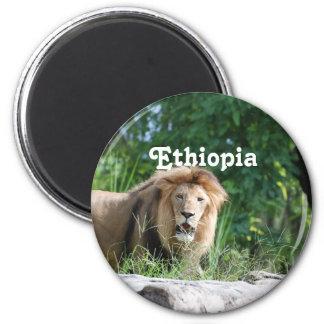 León de Etiopía Imán Redondo 5 Cm