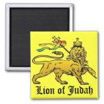 León de Judah Iman De Nevera