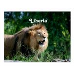León de Liberia Tarjeta Postal