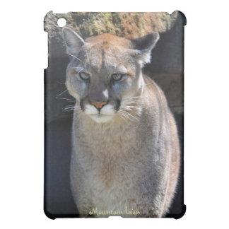 León de montaña - caso del iPad de la fauna del pu