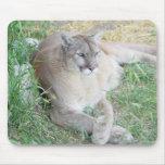 León de montaña de Montana Tapete De Ratones