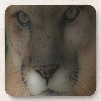 'León de montaña en el Hunt Posavasos De Bebida