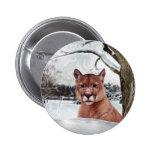 León de montaña en nieve pin