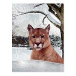 León de montaña en nieve tarjeta postal