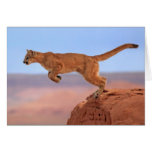 León de montaña felicitación