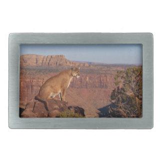 León de montaña hebillas cinturon rectangulares