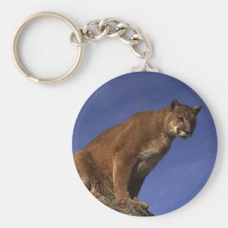 León de montaña llavero redondo tipo pin
