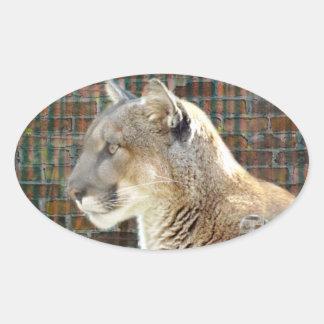 León de montaña/puma pegatina ovalada