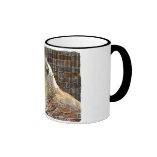 León de montaña/puma taza de dos colores