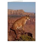 León de montaña tarjeta