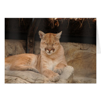 León de montaña tarjeta de felicitación