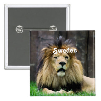 León de Suecia Pins