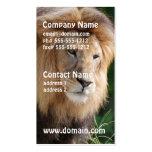 León de vagabundeo tarjeta de visita