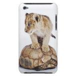 León del bebé que se coloca en la tortuga, fondo b iPod Case-Mate cobertura
