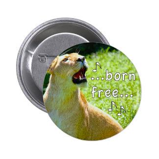 León del canto pin