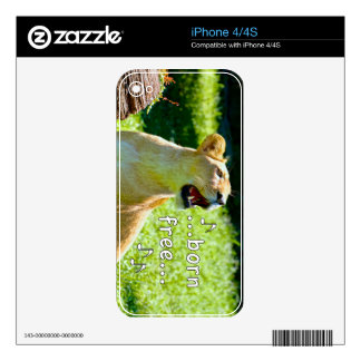 León del canto iPhone 4 skins