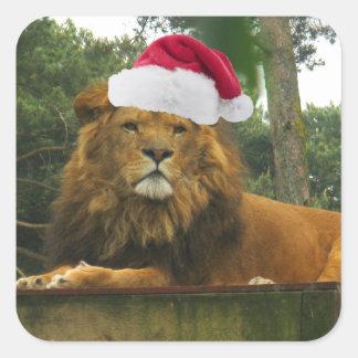 León del navidad que lleva el gorra de Santa Calcomanías Cuadradass
