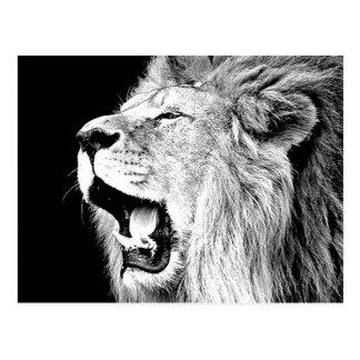 León del rugido tarjeta postal