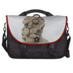 León del sur del banco bolsas de portatil