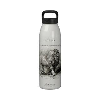 León del vintage botellas de beber