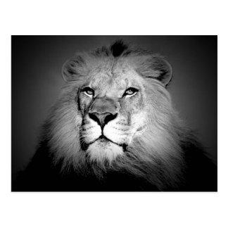 León el rey postales
