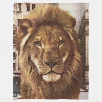 león en ciudad manta polar