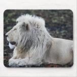 León en descanso tapetes de ratones