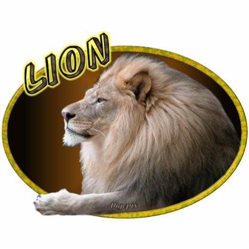 León en óvalo escultura fotografica