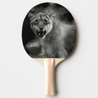 León enojado en blanco y negro pala de tenis de mesa