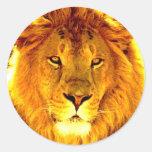 León Etiquetas Redondas