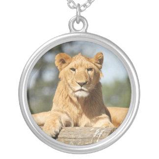 León femenino colgante redondo