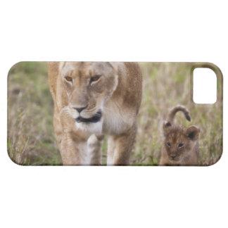 León femenino con el cachorro (Panthera Leo) como Funda Para iPhone SE/5/5s