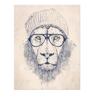 León fresco comunicados