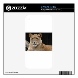 león-hhh skins para eliPhone 4S