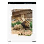 León iPad 3 Skins