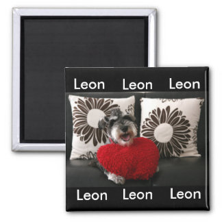 Leon magnets A