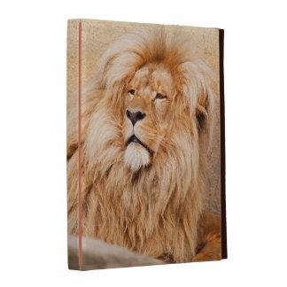 León majestuoso