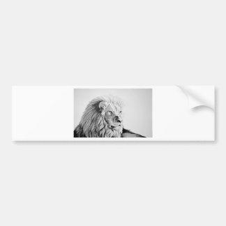 León majestuoso etiqueta de parachoque